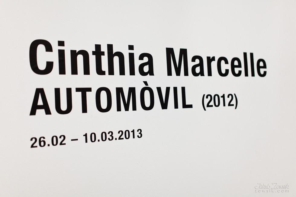 """Kulturalny czwartek w CSW (marzec 2013). Cinthia Marcelle - Automóvel; Wideo – prezentacje; Michał Frydrych """"Zamienię obraz na tysiąc słów"""". 15"""