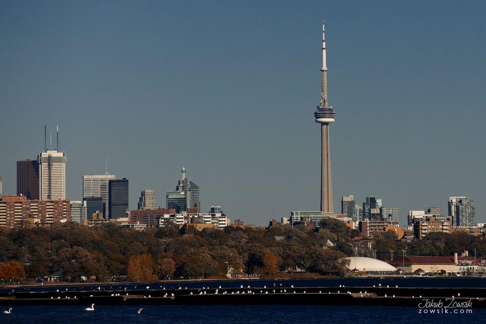 Toronto-photo-IMG_1196