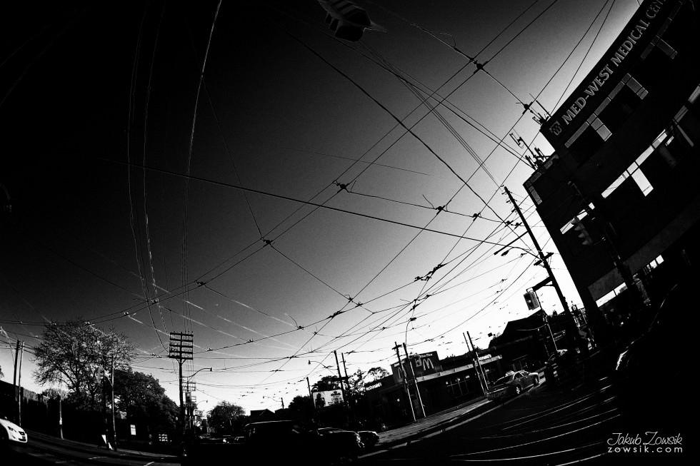 Toronto-photo-IMG_1592