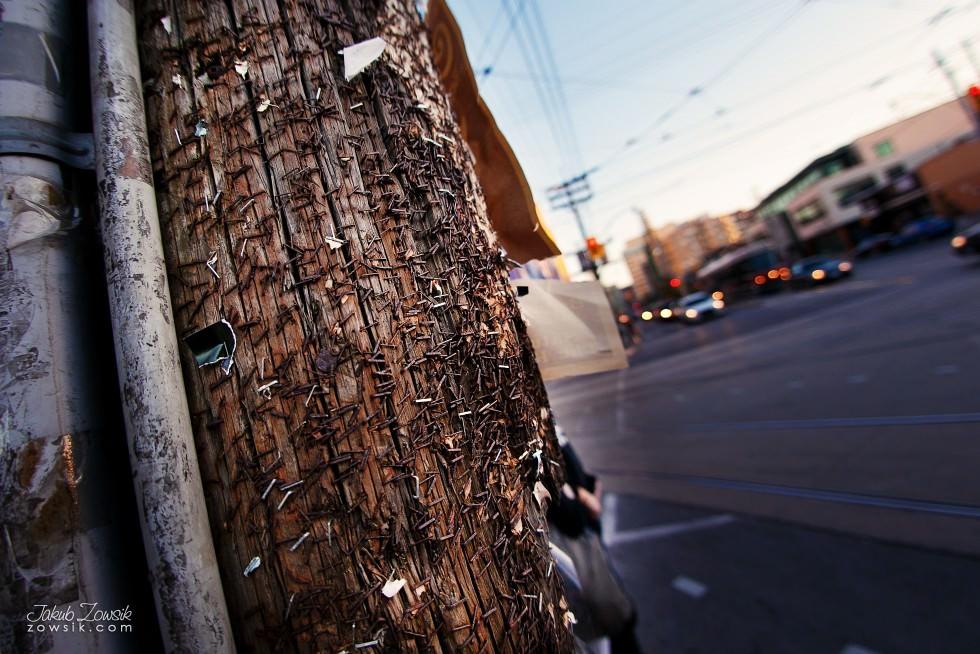 Toronto-photo-IMG_1656