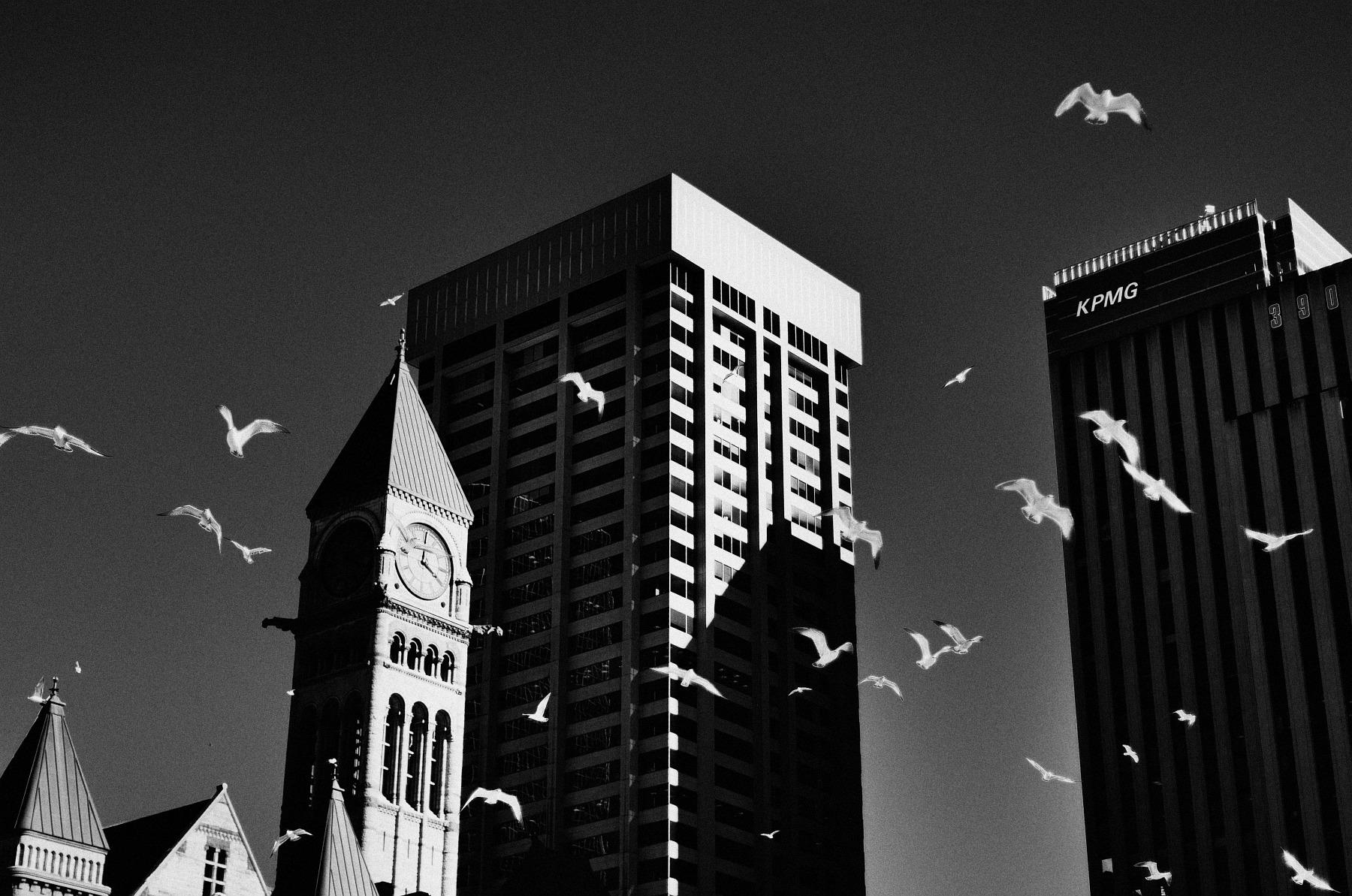 Toronto, dzień 3