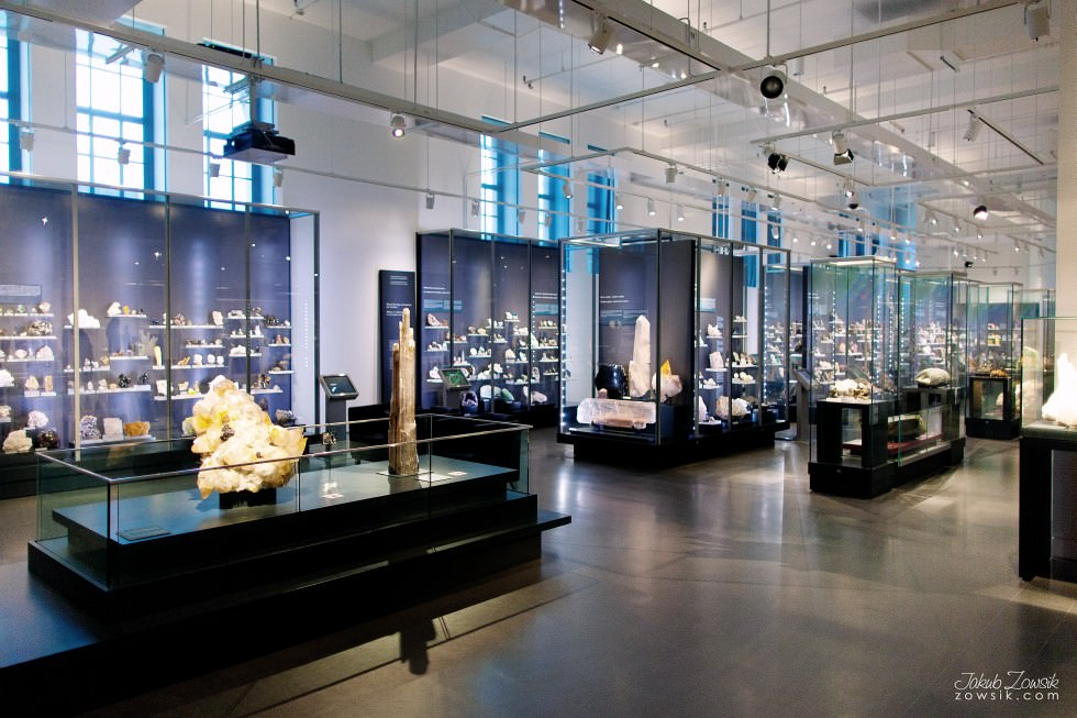 Toronto-Royal-Ontario-Museum-ROM-pictures-IMG_0479