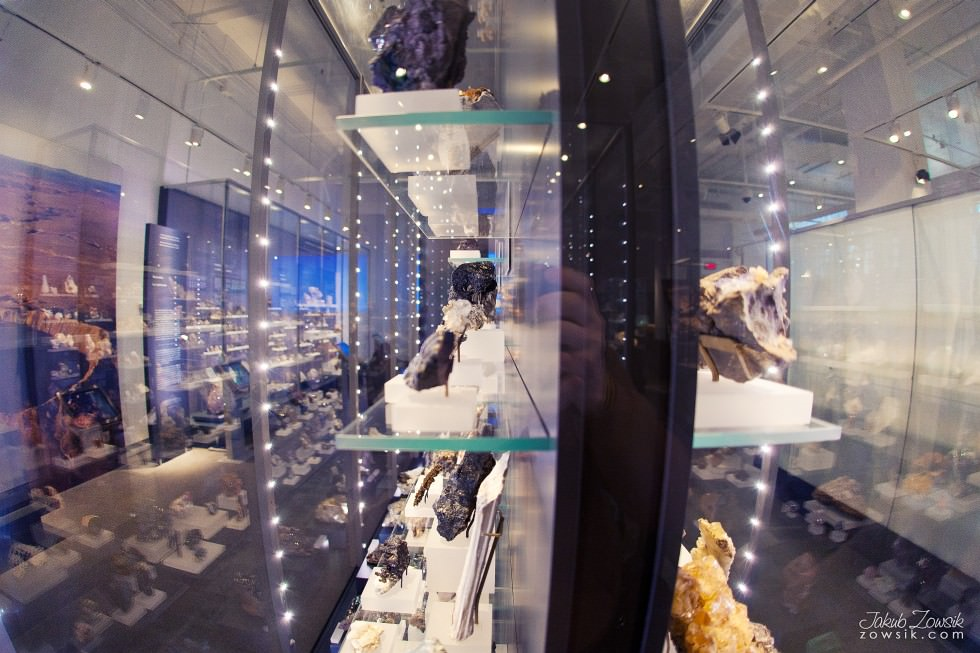 Toronto-Royal-Ontario-Museum-ROM-pictures-IMG_0507