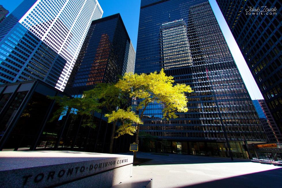 Toronto-picture-5dmk2-IMG_0017