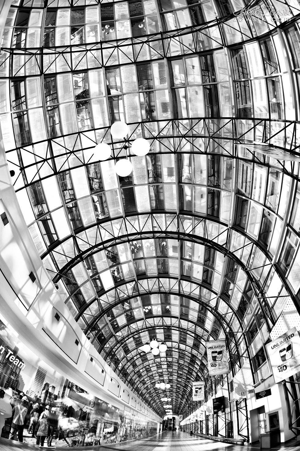 Toronto-picture-5dmk2-IMG_9609