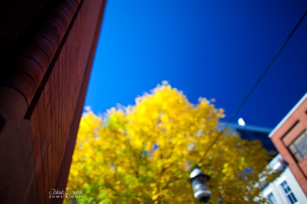 Toronto-picture-5dmk2-IMG_9773