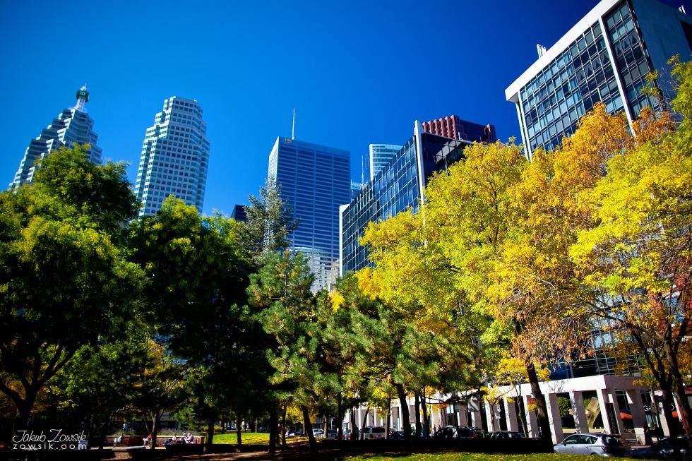 Toronto-picture-5dmk2-IMG_9780