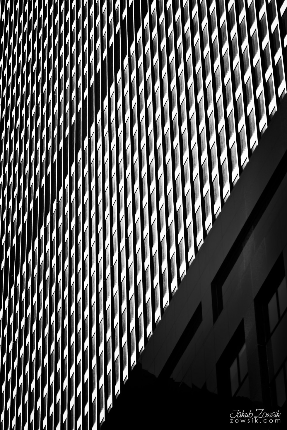 Toronto-picture-5dmk2-IMG_9826