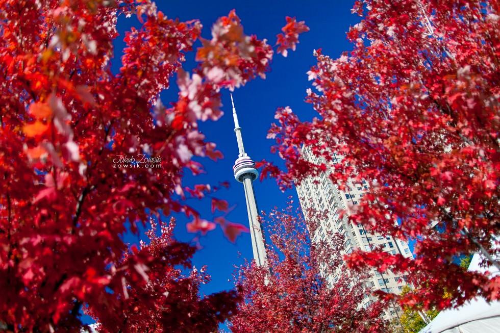 Toronto-zdjecia-IMG_1043
