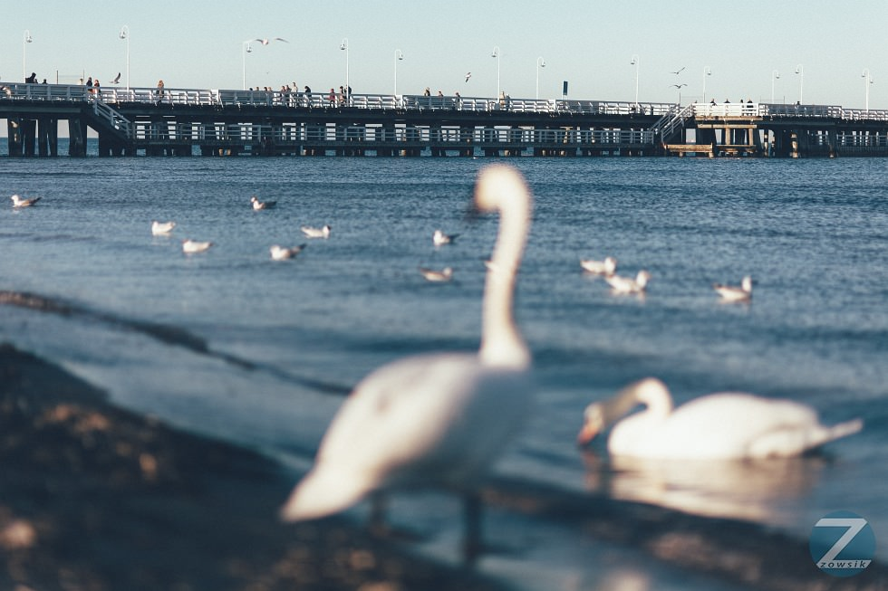 4-Leisure-Time-In-Sopot-2014-02_IMG_9997
