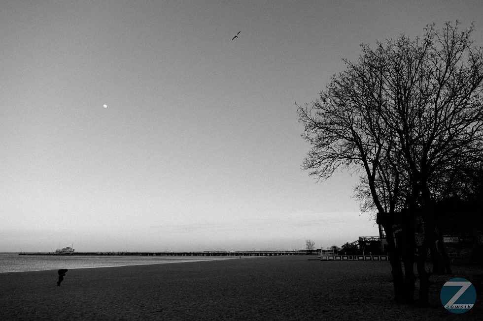 4-Leisure-Time-In-Sopot-2014-03_IMG_0131