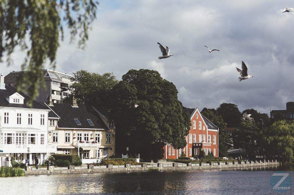 Leisure Time In Stavanger IMG_8175