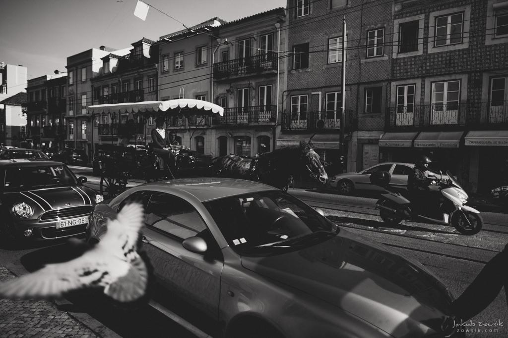 #11 Leisure Time In … Lisboa | Portugalia | Lizbona w 3 dni 102