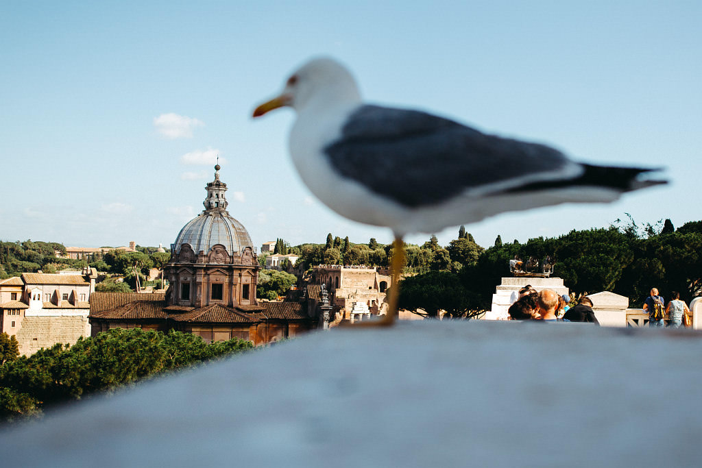 #15 Leisure Time In ... Roma   Rzym w 4 dni 91