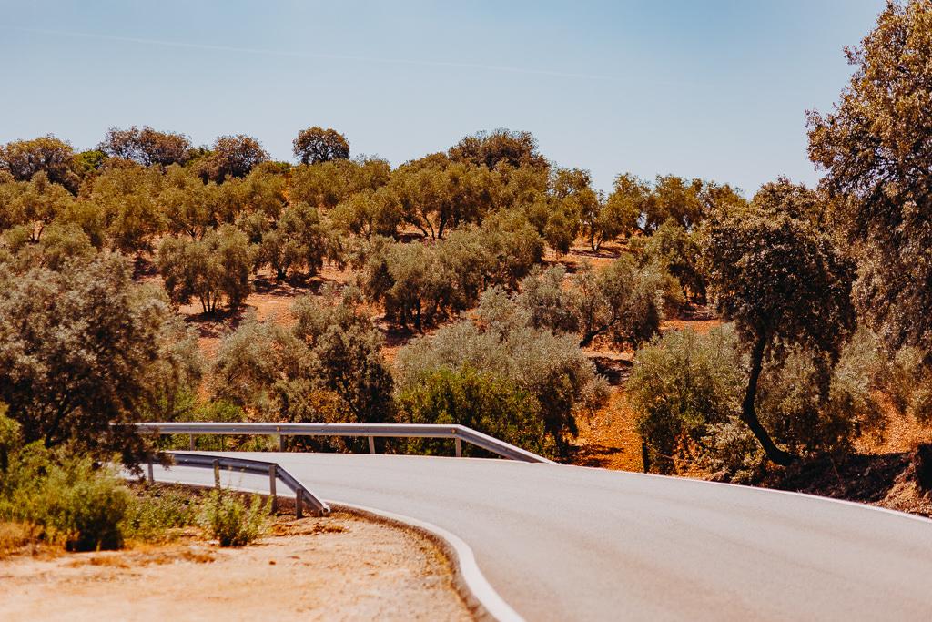 #16 Leisure Time In ... Hiszpania | Andaluzja (Malaga, Ronda, Benalmadena) | Gibraltar 19
