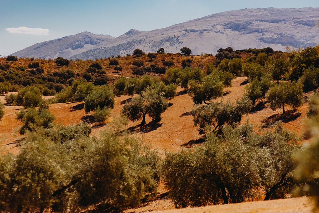 #16 Leisure Time In ... Hiszpania | Andaluzja (Malaga, Ronda, Benalmadena) | Gibraltar 21