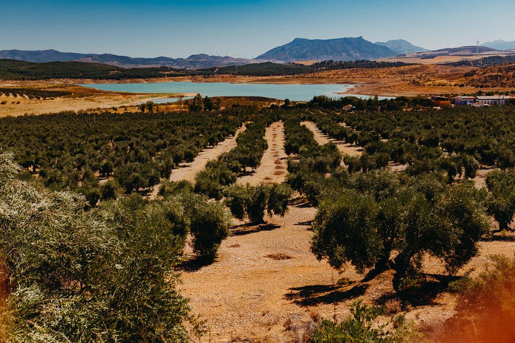 #16 Leisure Time In ... Hiszpania | Andaluzja (Malaga, Ronda, Benalmadena) | Gibraltar 32