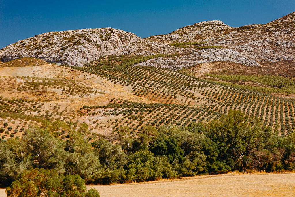 #16 Leisure Time In ... Hiszpania | Andaluzja (Malaga, Ronda, Benalmadena) | Gibraltar 38
