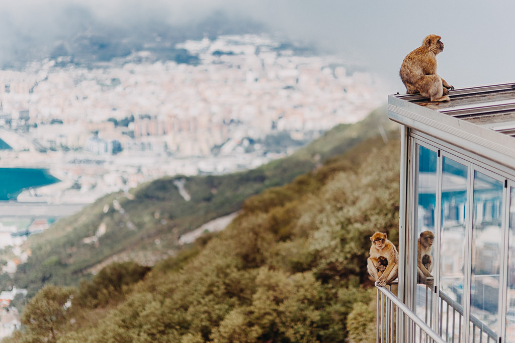 #16 Leisure Time In ... Hiszpania | Andaluzja (Malaga, Ronda, Benalmadena) | Gibraltar 91
