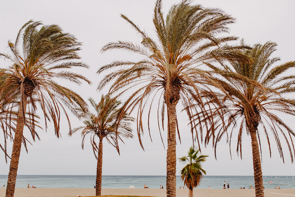 #16 Leisure Time In ... Hiszpania | Andaluzja (Malaga, Ronda, Benalmadena) | Gibraltar 157