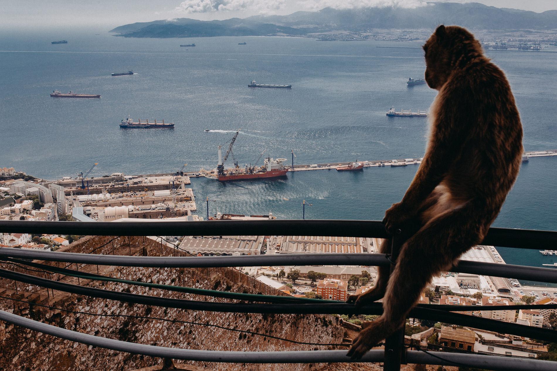 #16 Leisure Time In … Hiszpania | Andaluzja (Malaga, Ronda, Benalmadena) | Gibraltar